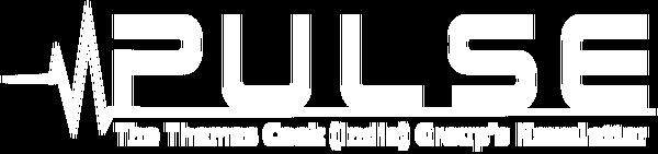 pulse-logo-13