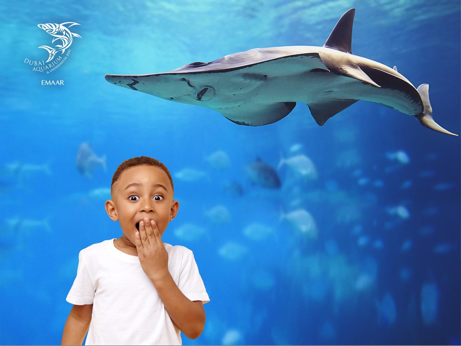 Aquarium_GS1