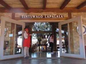 Tintswalo Lapalala