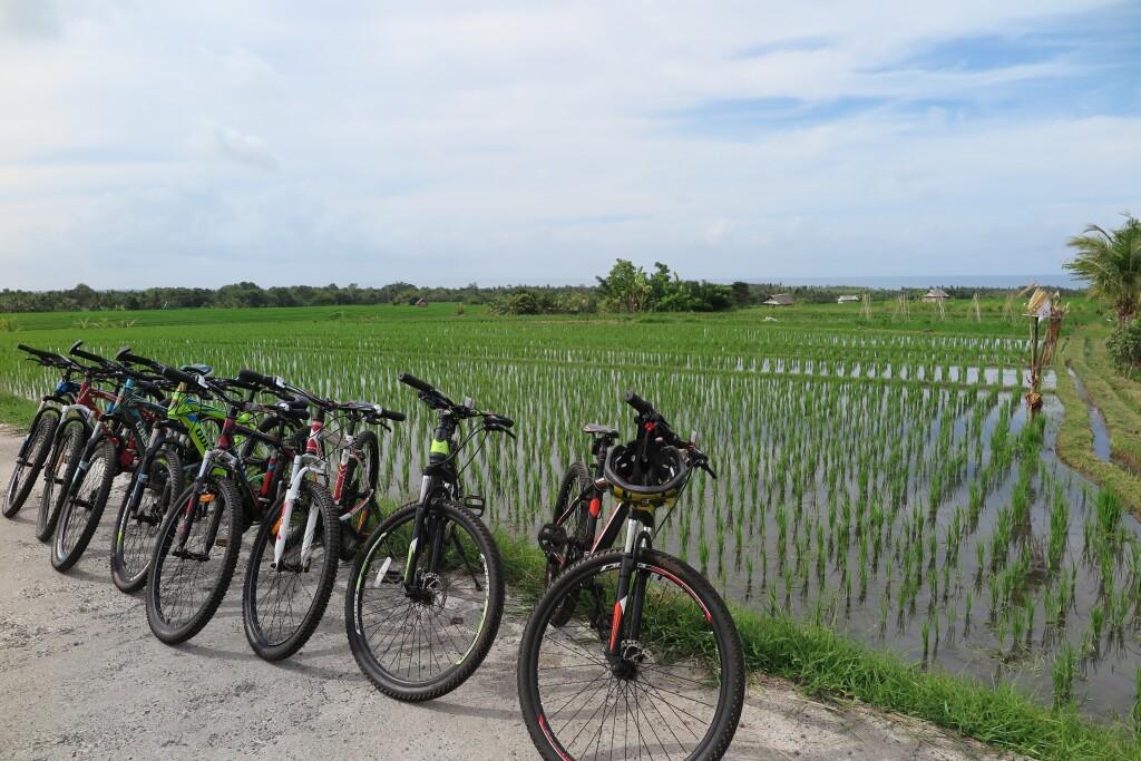 Indonesia - Beautiful Bali by bicycle (credit Bebali Village Adventure)