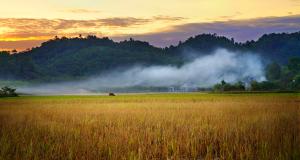 Vietnam - Haven for outdoor exploration (credit Nam Cat Tien National Park)